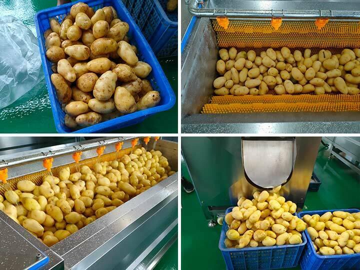 brush cleaning machine for washing potato